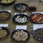 Reclaim the Seeds - 4 en 5 maart - Nijmegen